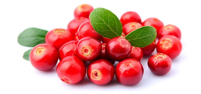 holistische Zusammensetzung mit Cranberry